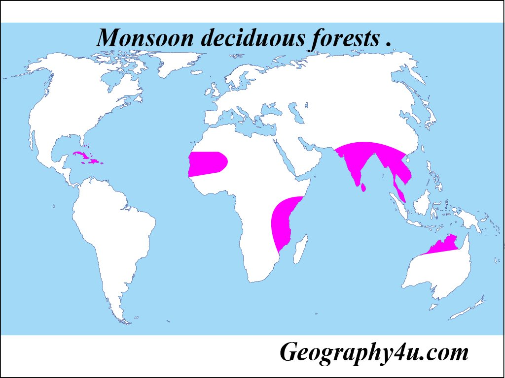 Distribution of deciduous forests