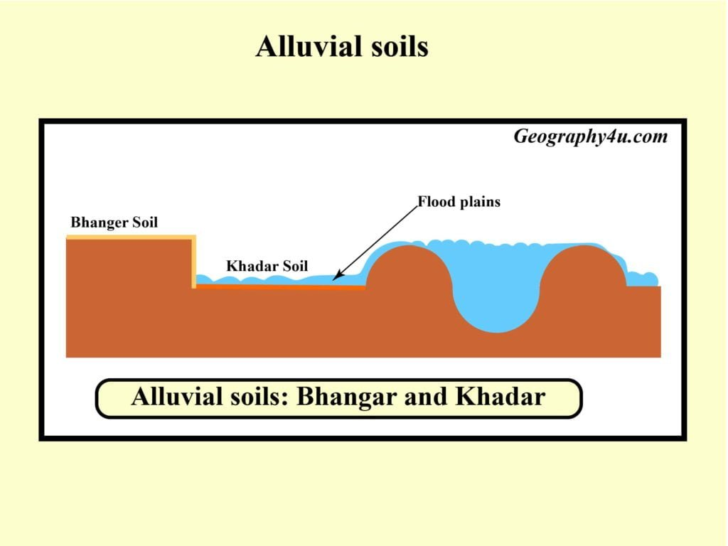 Types of soils in India- Alluvial soil