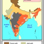 Soil types in India