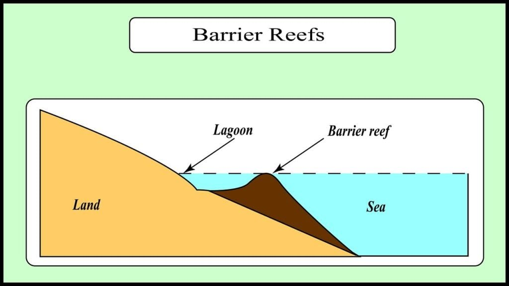 Formation of coral reefs